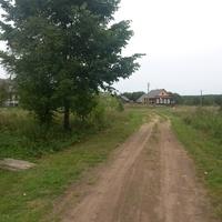 Дорога из Байнёво на Центральную улицу.