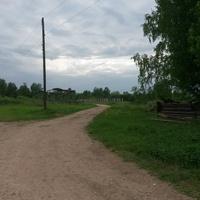 д.  Карнаухово. Август 2015года. Прямо идётдорога в  д.Кашино Крестецкогорайона. Налево - раньше была улица деревни.