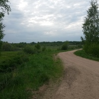 Начало дороги Карнаухово -Кашино.