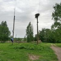 д.Милятино. Август 2015  года. Связьс Большой землёй и гнездо аиста.