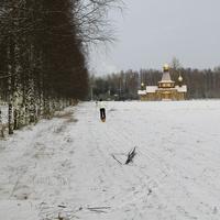 Поле рядом с Детскосельским