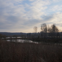Хонятино, пруды