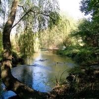 Каменоломни. Река Грушевка при впадении в неё Реки Семибалочной.