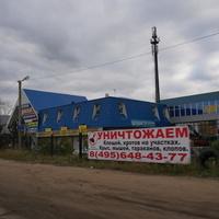 Автовинил
