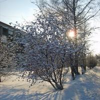 Ленинск-Кузнецкий зимой