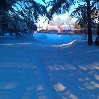 зима в Княжево