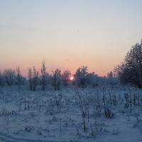 Кингисеппское шоссе, Яблоневый сад