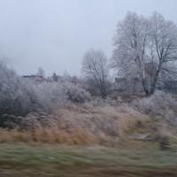 Сотниково декабрь 2015