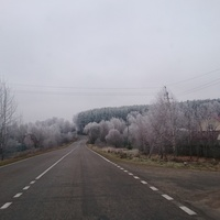 Байдиково, ноябрь 2015