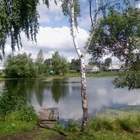 Плотина 2009