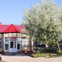 магазин Тюльпан
