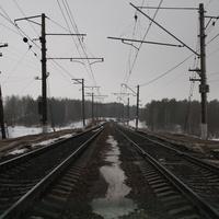 Станция Лесные Дары