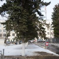 Видновская районная поликлиника