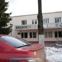 Видновский городской суд