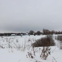 д. Филипповичи, Зарайский район. Февраль, 2016. Вид на деревню