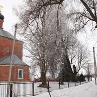 Богородицкая церковь