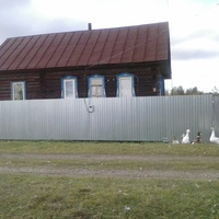 Дом Краснопевцева Александра (до 90-х годов) в деревне Ионино