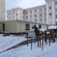 """скульптура на территории отеля """"365 дней"""""""