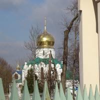 Вид на Феодоровский Государев собор