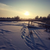 Пруд возле разрушеной фермы, между Попцовом и Хозницами