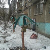 Павлодарский дворик