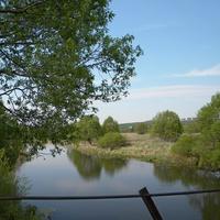 Природа села Любимовка