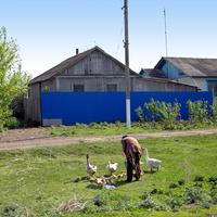 Облик села Нижнее Гридино