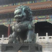 Пекин,2012 г