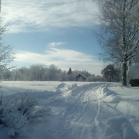Щипцово-Зимний денёк!