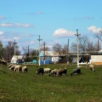 Облик села  Проходное