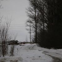 Грызлово, дорога в бывший пионерский лагерь Русская Сказка