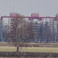 Окраина Детскосельского