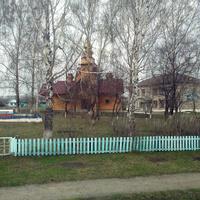 Большое Трифоново. 2016 г