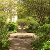 Собственный сад императрицы Марии Федоровны