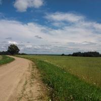 Дорога с д.Киселево в д.Обольцы