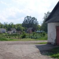 28 мая 2016.Плодопитомник имени  Мичурина.