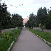 Синельниково.05.06.2016.Улица Садовая.