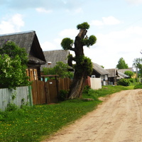 Перевесы, деревенская улица.