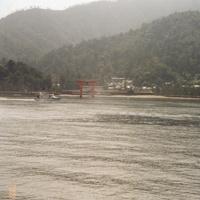 Хацукаити. Тории на острове Миядзима.