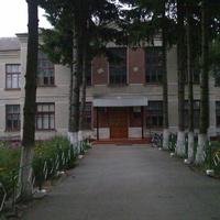 Радошівська школа