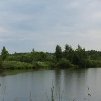 Малино, пруд