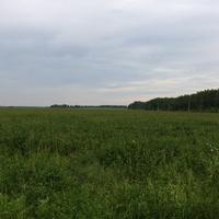 Сотниковское
