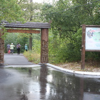 Толши. Воронежский заповедник.