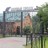 Толши. Бобровый городок в Воронежском заповеднике.