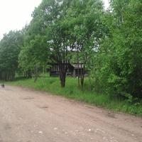 Падбережье ( Налески ) по  дороге  в  деревню  Высокуша