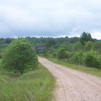 начало  дороги  из  Падбережья ( Налесок ) в Селилово