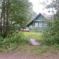 Падбережье ( Налески ), дом  Пекалёвых, май 2010 г.