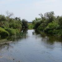 р. Тьма у моста между Новое и Скоморохово