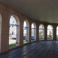 Шушары, галерея института