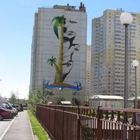 Шушары, дом с пингвинами на ул. Окуловской, 5